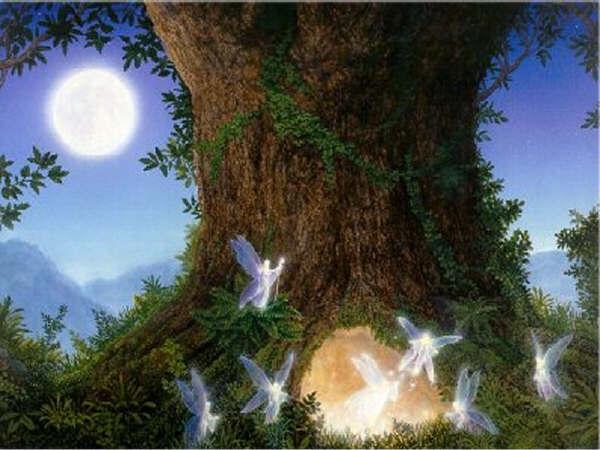 drevo-angely