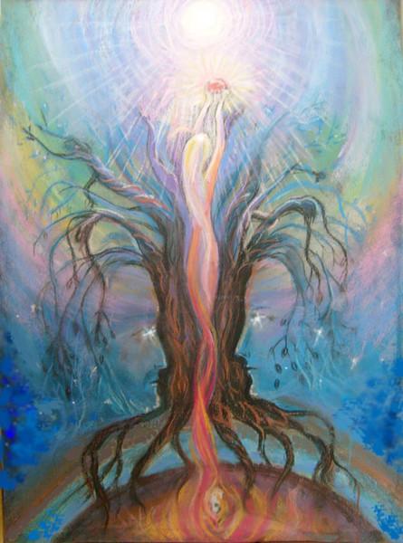 drevo-jizni