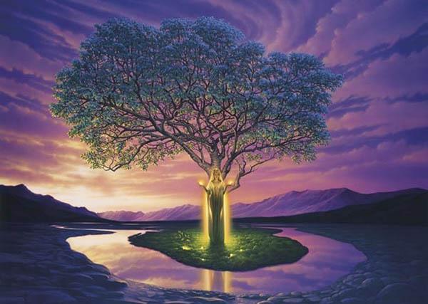 rodovoe-drevo