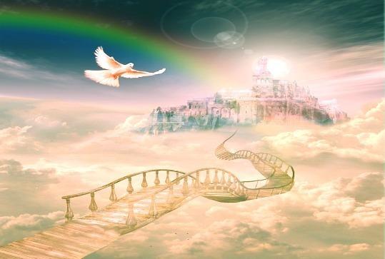 gorod-sveta-dlya-svetlyh-lyudej-golub