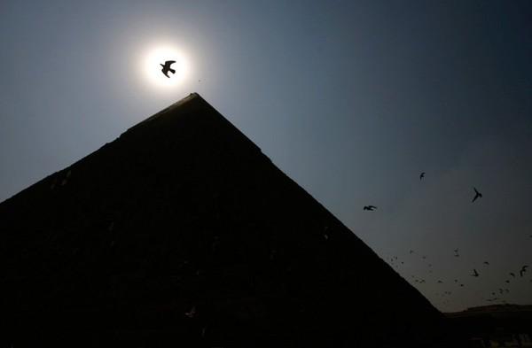 orel-v-svete-nad-piramidoy